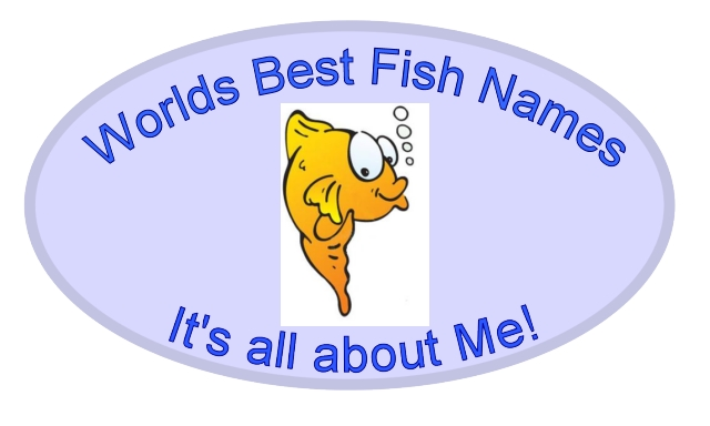 fish names home pet fish names a pet fish names b pet fish names c pet